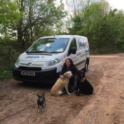 Pet Sitting, Walking & Boarding, Petpals West Cardiff