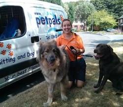 Dog Boarding Kennels In Southampton Area