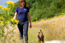 service-Petpals-Dog-Walking