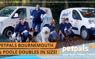 Petpals Bournemouth and Poole Doubles in Size