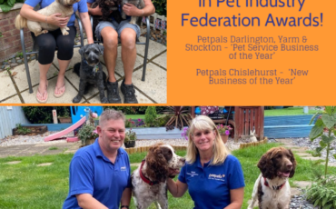 Two Petpals franchises reach finals of national PIF awards